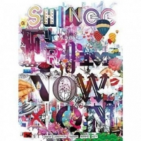 SHINee THE BEST FROM NOW ON 2CD附DVD附豪華寫真本64頁 (購潮8)