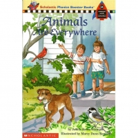 Phonics Booster Books 34: Animals are Everywh